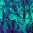 KathKath_WinterForestBlue_SilkSquareScarf